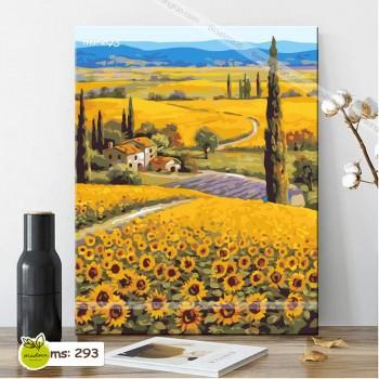 Tranh tô màu đồi hoa hướng dương 293