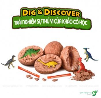Bộ khảo cổ trứng khủng long