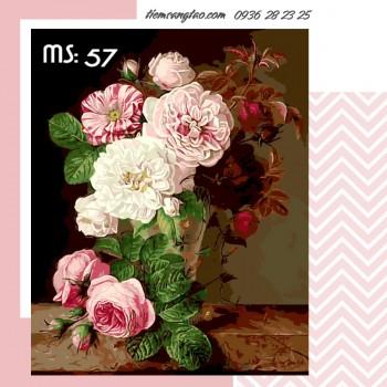 tranh tô màu 50x65 hoa hồng đỏ trắng