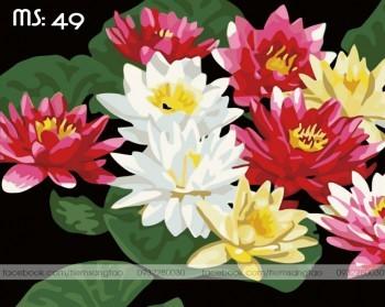 Tranh tô màu 50x65 hoa sen